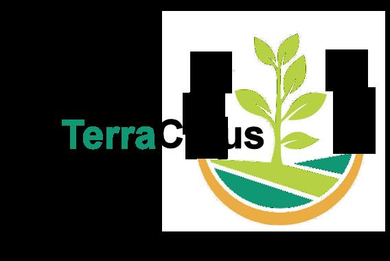 Terracibus
